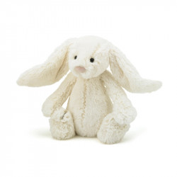 Gullig kanin liten